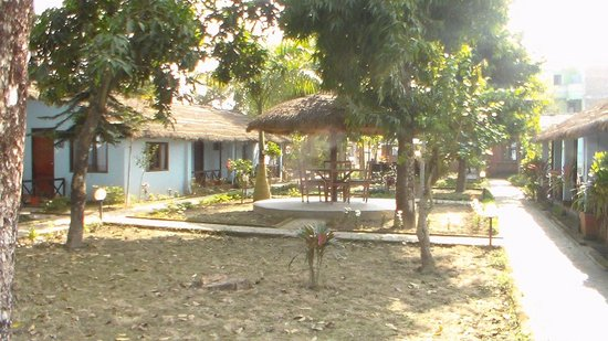 Chitwan Forest Resort: Cottage and the grounds