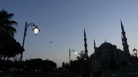 Tria Elegance Istanbul: Dawn break