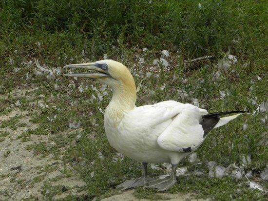 Pôle-Nature du Marais aux Oiseaux