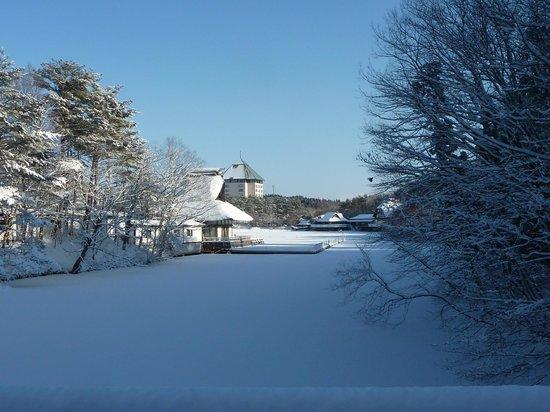 Hoshino Resorts Aomoriya: 庭園からのホテル