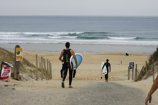 7 Essencia Surf & Bodyboard School : Go surfing