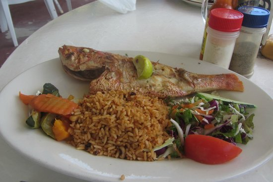 OJ's Bar & Restaurant : Red Snapper