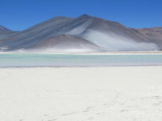 Lagunas Miscanti y Miniques: Salar de Talar