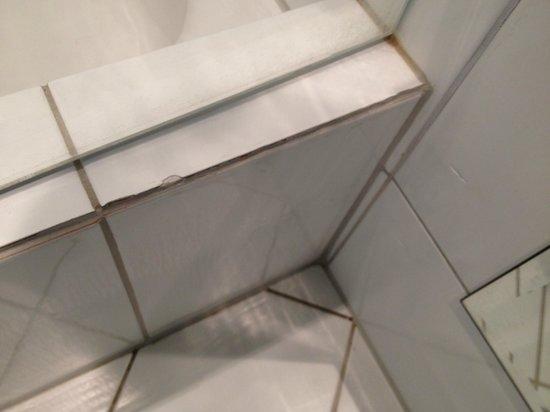 Victoria Jungfrau Grand Hotel & Spa : Bathroom tiles, need... some care