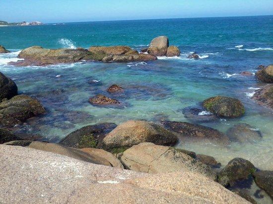 Praia Mole : O esplendor da natureza o ano inteiro
