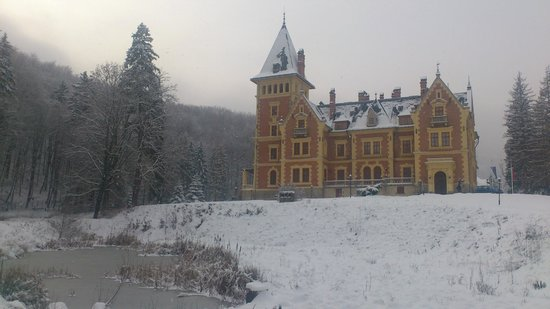 Kastelyhotel Sasvar Resort Mansion Hotel: Hill, trees, snow, ice, castle