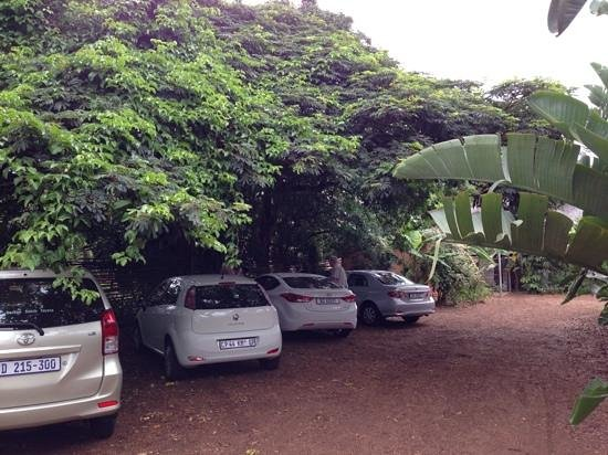 Lidiko Lodge: Parking under the passion fruit tree.