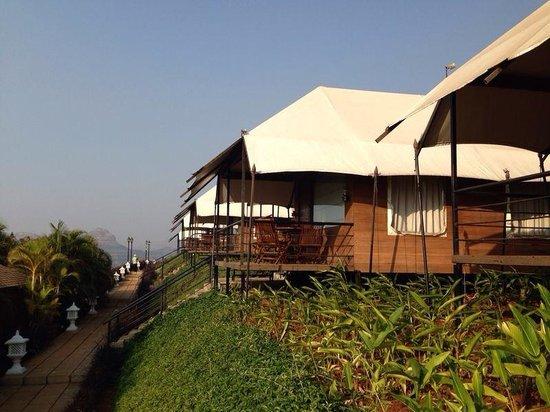 Della Adventure Resorts Hill side luxury tents & Hill side luxury tents - Picture of Della Adventure Resorts ...