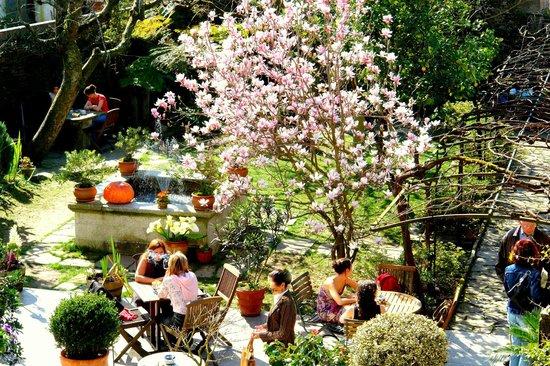 Costa Vella Hotel: Flores primavera