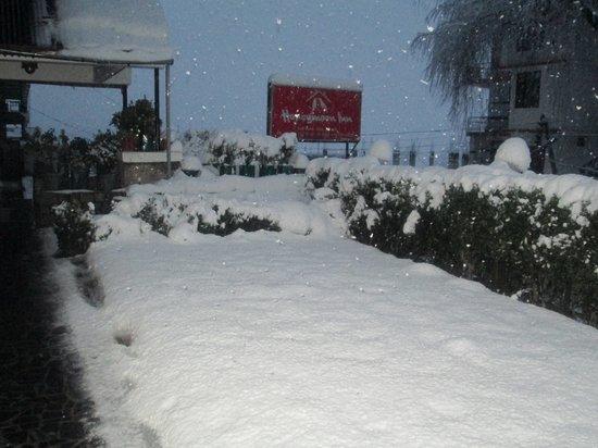Honeymoon Inn Manali: Winter in manali
