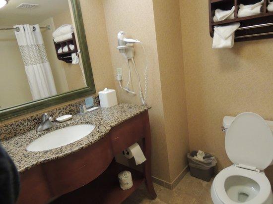 Hampton Inn & Suites By Hilton Williamsburg-Central: bano