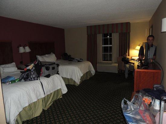 Hampton Inn & Suites By Hilton Williamsburg-Central: habitacion
