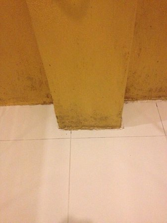 The Small Chiang Mai : Moldy Shower