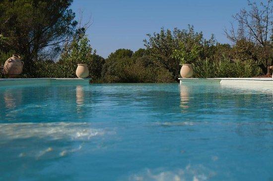 piscine picture of le lavoir du lauzon montsegur sur. Black Bedroom Furniture Sets. Home Design Ideas
