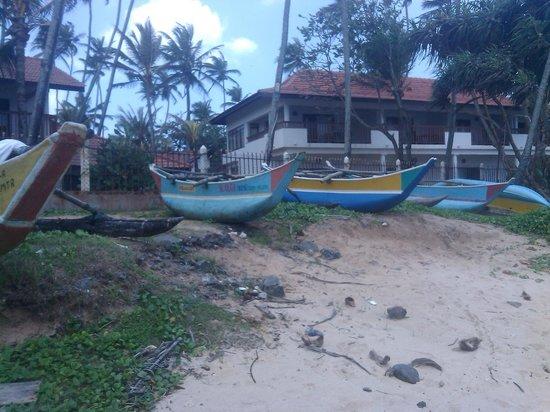 Dickwella Resort & Spa: Вид на бунгало со стороны рифа