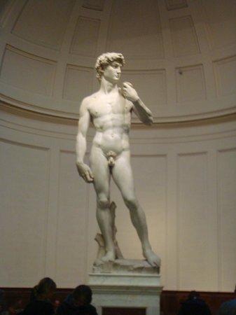 Galleria dell'Accademia : David (enero 2014)