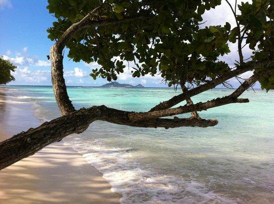Hilton Seychelles Labriz Resort & Spa : ballade le long du lagon