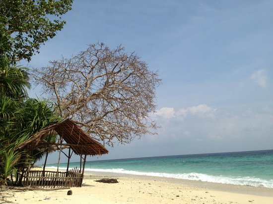 Casa Nemo Beach Resort and SPA: Unbelievable beach - and this is supposed to be during the low season!