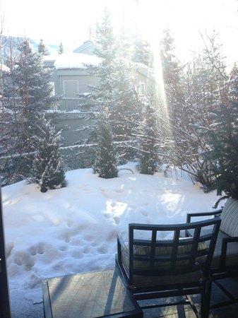 The Gant: Nosso quintal! Com a Aspen Mountain ao fundo.