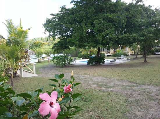 Antigua's Yepton Estate Cottages: Right outside cottage 2