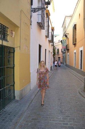Pension La Montorena: Отель находится на этой улице