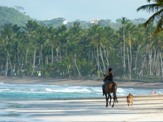 Playa Bonita : passeggiata in compagnia
