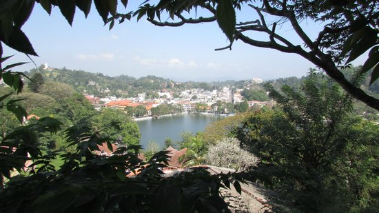 Hotel Thilanka: view from terrace