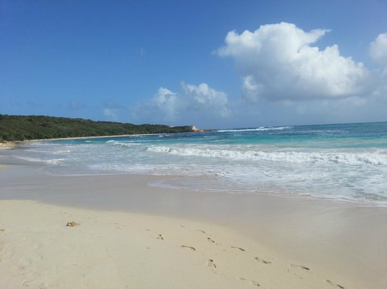 Antigua's Yepton Estate Cottages : Half Moon Bay