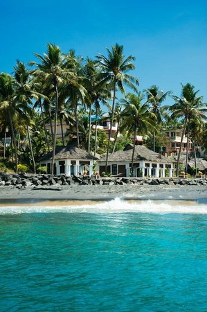 Palm Tree Heritage : Palm tree bungalows