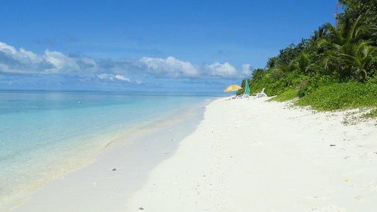 Coral Reef View Inn: spiaggia dove potete liberamente stare in costume!