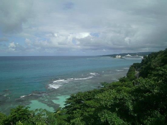 Rainforest Adventures Jamaica : Great views
