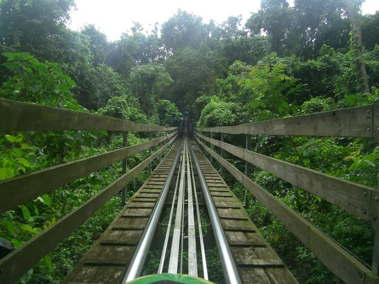 Rainforest Bobsled Jamaica at Mystic Mountain: Hold on!