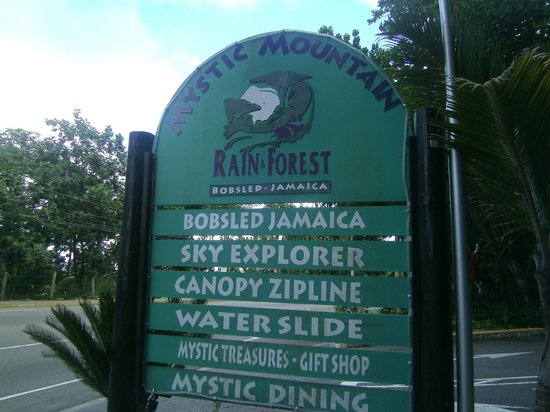 Rainforest Bobsled Jamaica at Mystic Mountain: Expensive, but fun!