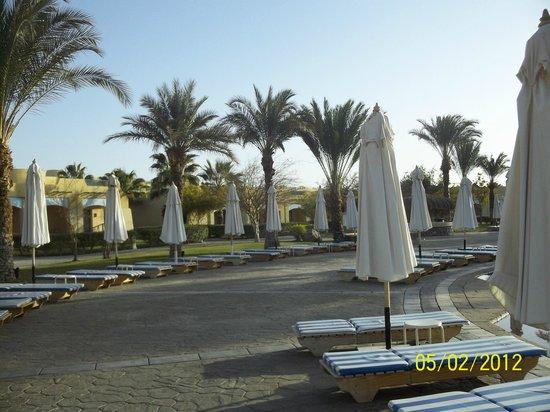 The Bay View Resort Taba Heights : возле бассайна