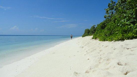 Coral Reef View Inn: la spiaggia
