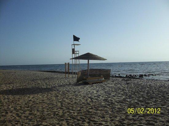 The Bay View Resort Taba Heights : мой одинокий шезлонг