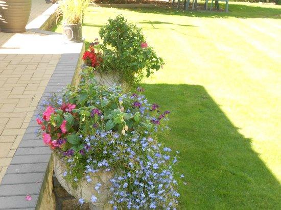 The Timbers Bed & Breakfast: garden 3