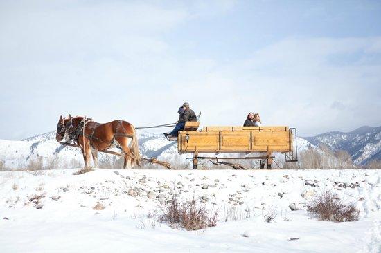 Wilson, WY: Handmade sleigh