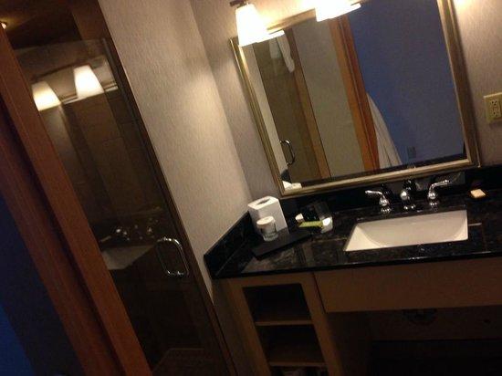 Embassy Suites by Hilton Niagara Falls Fallsview Hotel: Bathroom