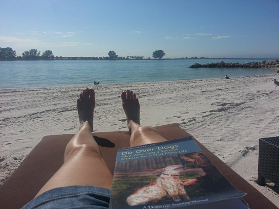 DreamView Beachfront Hotel & Resort: my book, comfy chaise lounge, the sun, beautiful white sand & amazing view!  Trudy Lyons loves i