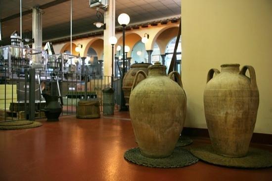 Societa Agricola Trevi Il Frantoio: Particolare interni: Museo dell'olio