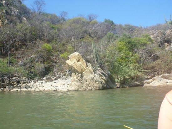 Aventura Mundo : river bank