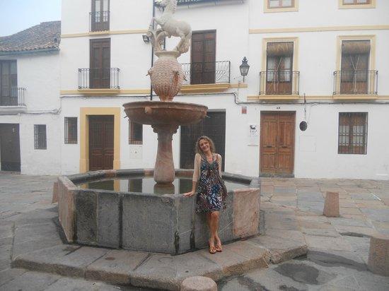 Maestre: Plaza del Potro, a la vuelta del hotel