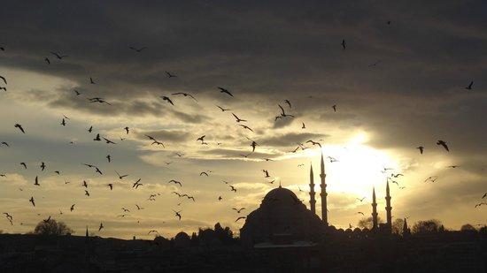 Mezquita de Suleiman o Mezquita de Süleymaniye: call for prayer