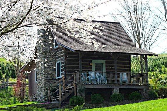 Boyd Mountain Log Cabins : Cosby Cabin