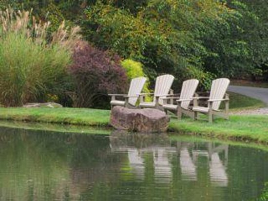 Boyd Mountain Log Cabins : Enjoy fishing or just sitting by the small pond