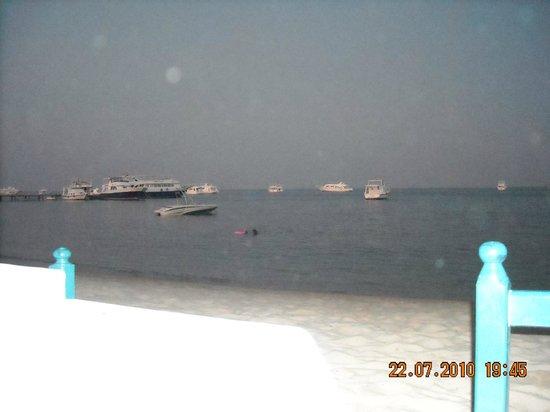 Lotus Bay: бар на пляже