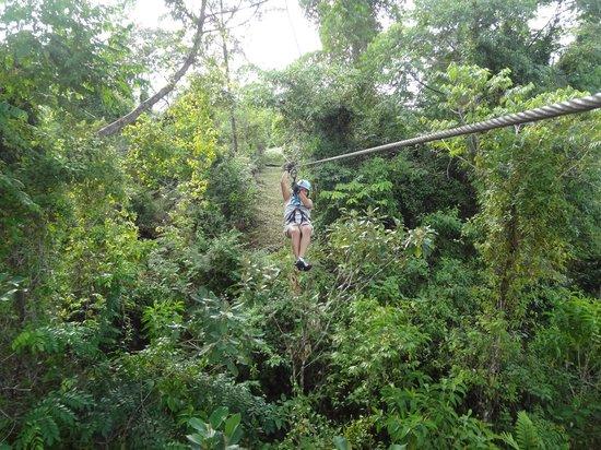 Corcovado Canopy Tour: Con Silvia de Casa Drake