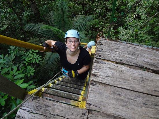 Corcovado Canopy Tour : Subiendo para ir al siguiente