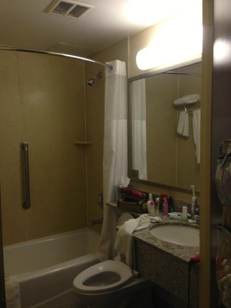 Comfort Inn Times Square South : Bathroom